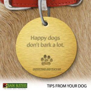 #stamforddogbarking #bestdogtrainerstamford #dogtrainingstamford